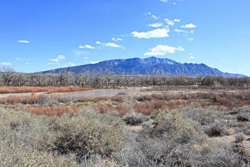 Rio Grande and Sandia Mountains from Coronado Historic Site