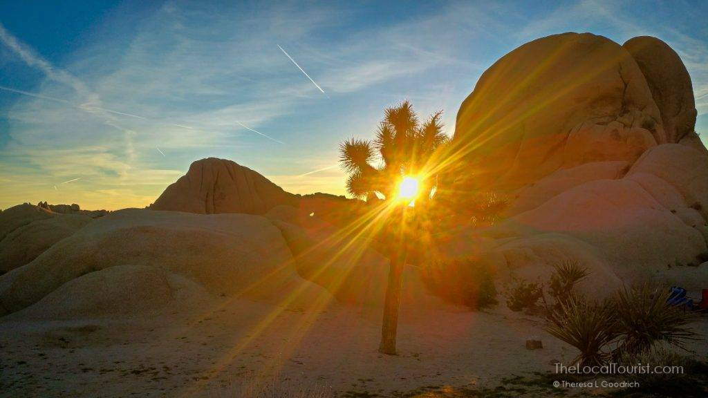 Sunrise in Jumbo Rocks campground