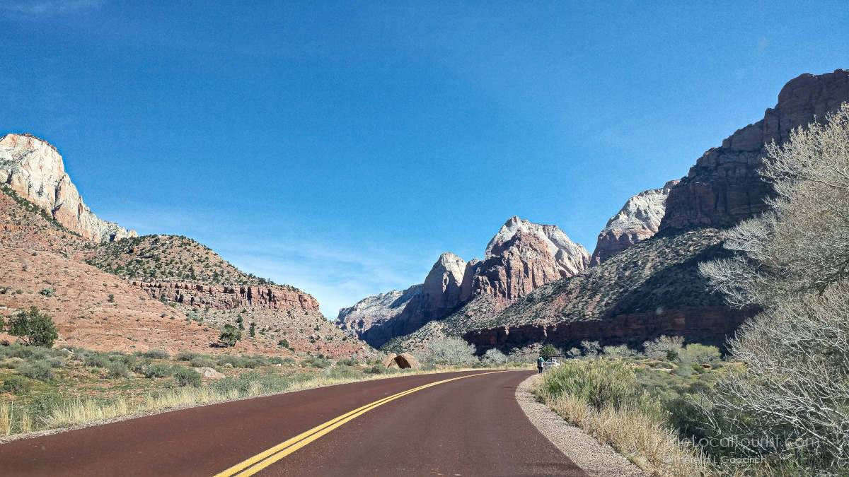 Road leading into Zion National Park