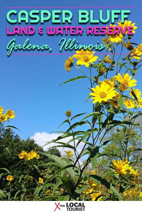 Not far from the charming town of Galena, in the northwest corner of Illinois, Casper Bluff Land & Water Reserve is a preserve of prairie and forest overlooking the Mississippi River.