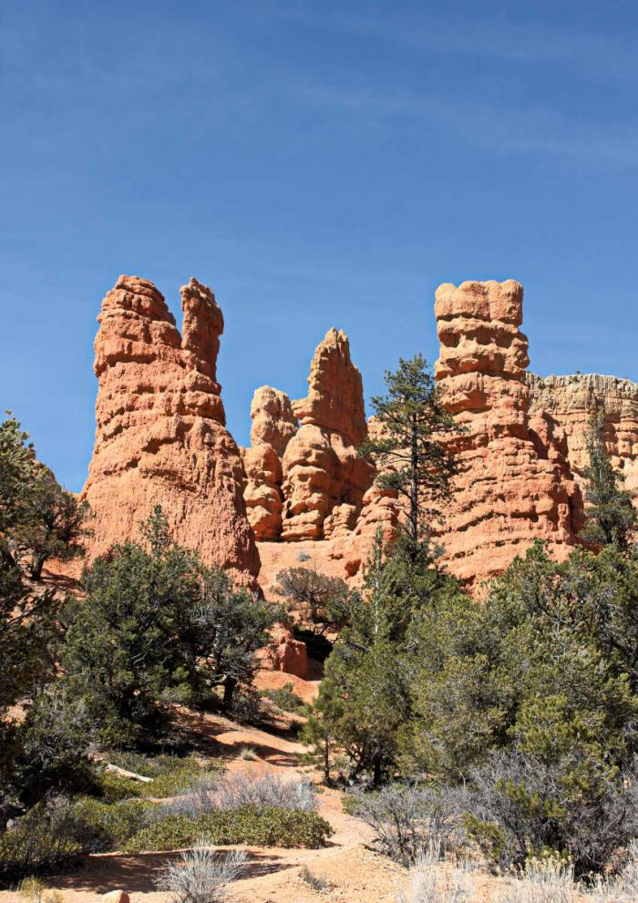 Red Canyon in Utah Canyon Country