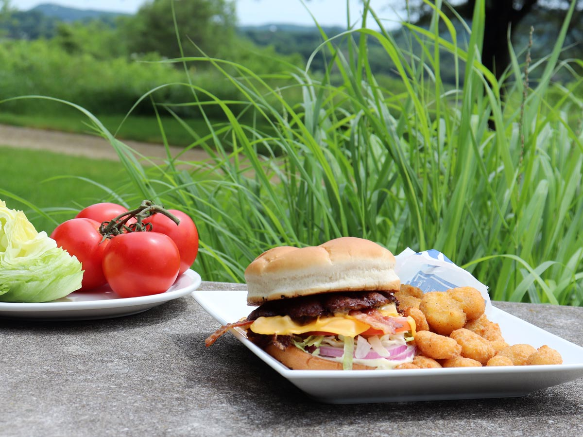 Culver's Butterburger and cheese curds with the Wisconsin River in the background