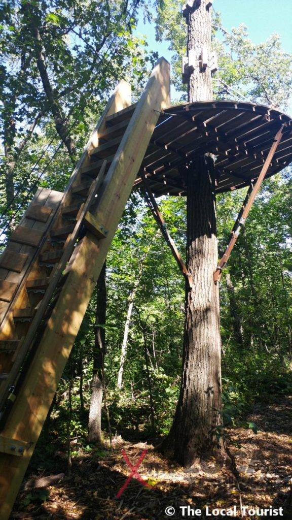 Long Hollow Canopy Tours - first platform