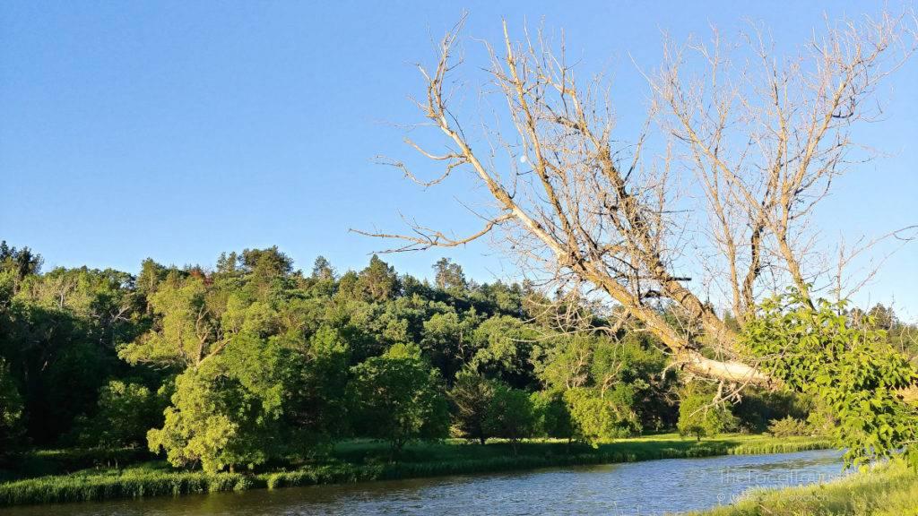 Niobrara River in the morning