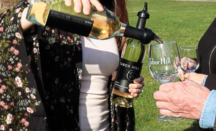 Trying Tabor Hill wines in the vineyard