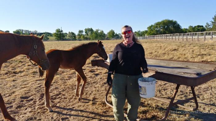 Theresa Goodrich in her happy place feeding horsies