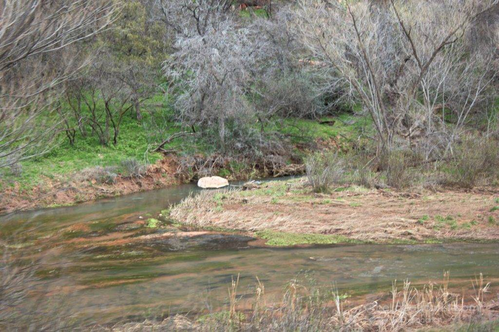 Verde River in the Verde Canyon