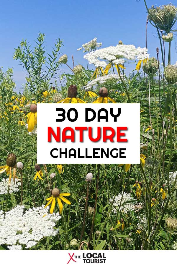 Want to feel better, both mentally and physically? Take a 30 Day Nature Challenge in your own backyard!